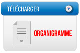 telecharger-organigramme